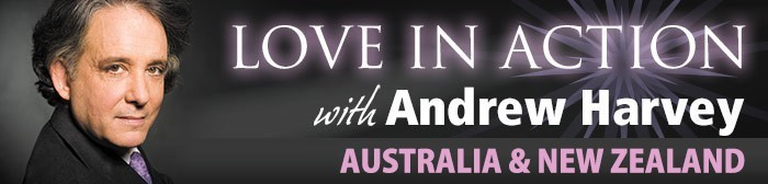 andrew-harevy-2014-love-in-action-header.jpg